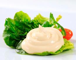 Unilever Bestfoods Puriflo Effluent _Treatment